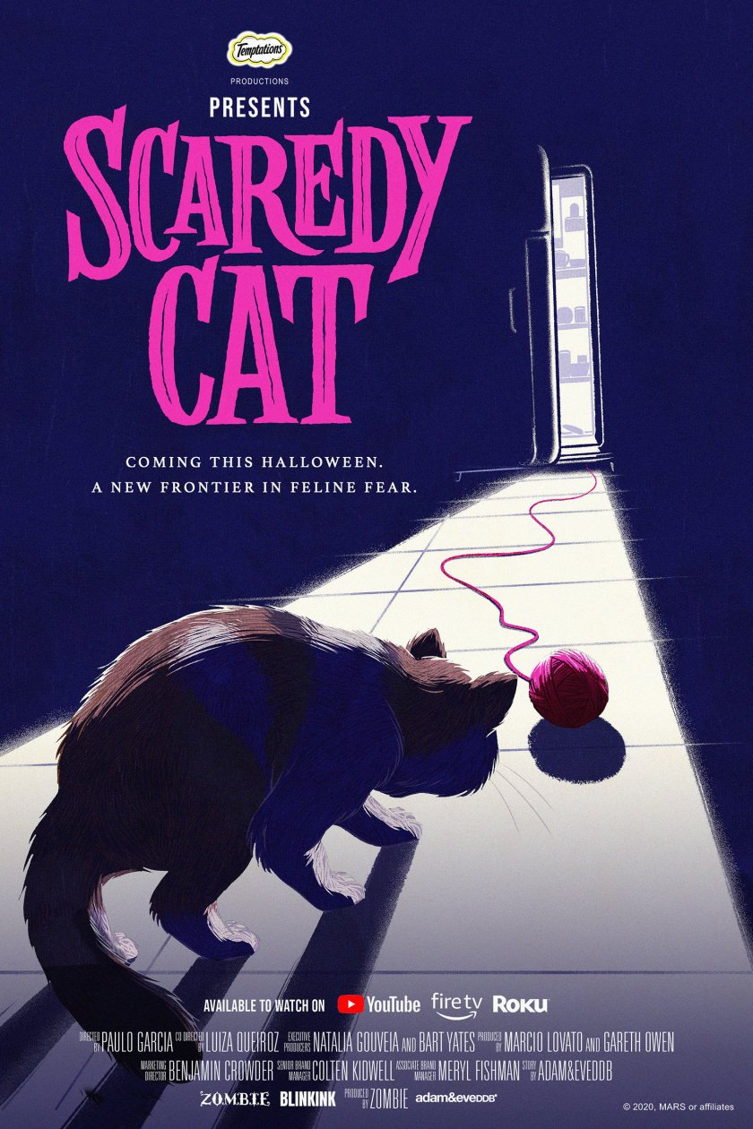 Първият филм на ужасите, заснет специално за котки