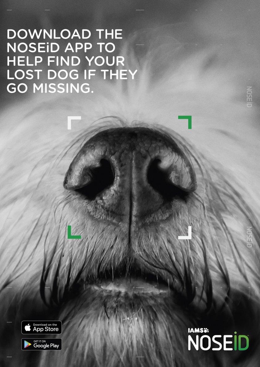 Новото приложение NOSEiD идентифицира изгубените кучета по уникалните отпечатъци на носа им