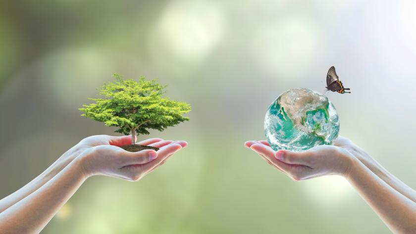 Какво е ESG и защо e все по-близо до сърцето на брандовете и инвеститорите