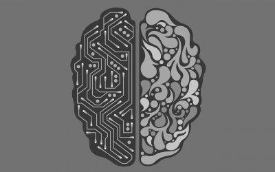 Мисленето, доминирано от лявото полукълбо на мозъка, обяснява спада в ефективността на рекламата