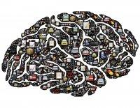 Ново биометрично изследване установява, че потребителите реагират повече на онлайн реклами поставени в подходящ контекст